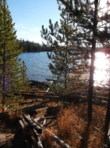 One of the many terrific hikes in Yellowstone. Ice Lake to Little Gibbons Falls.