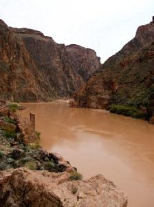 """Colorado River, """"bottom"""" of the Grand Canyon."""