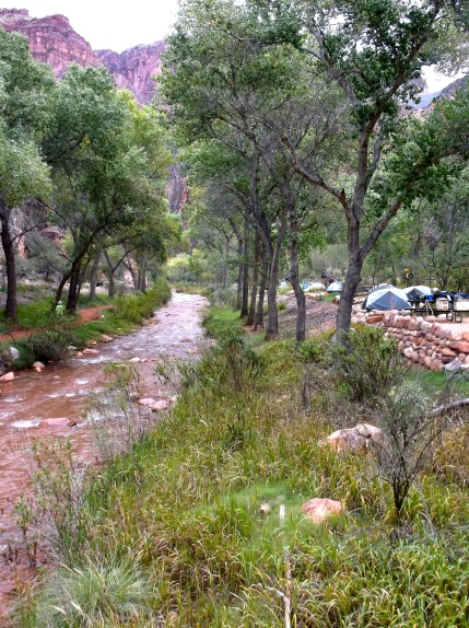 View of Bright Angel Creek & campground, looking south. Early arrivals choose riverside sites
