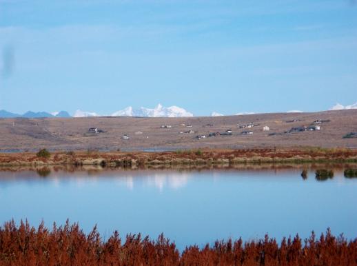 View across Lago Argentina from Laguna Nimez.